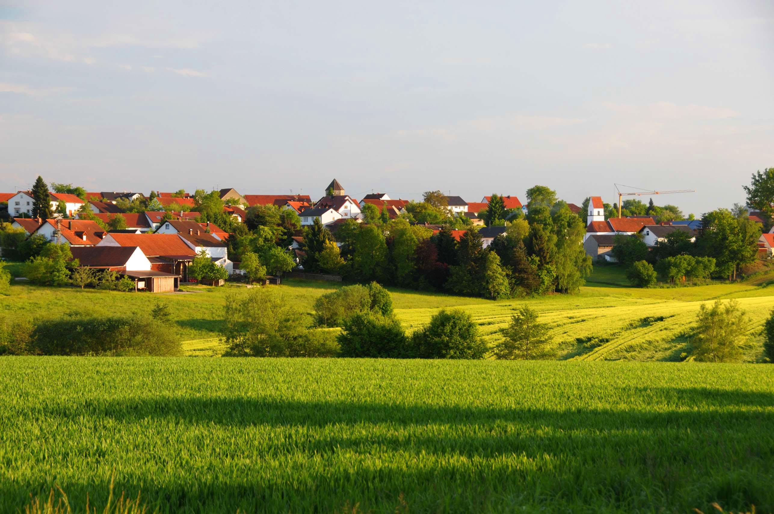 Alberzell